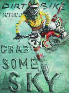Grab Some Sky by Janet Kruskamp