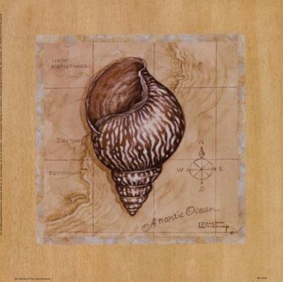 Sea Treasures IV by Janet Kruskamp