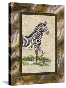 Zebra by Janet Kruskamp