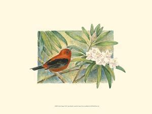 Scarlet Tanager by Janet Mandel