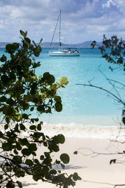 Buck Island, Saint Croix, Us Virgin Islands. Sailboat by Janet Muir
