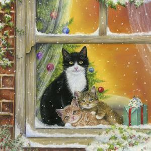 Christmas Window by Janet Pidoux