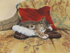 Comfy Slipper by Janet Pidoux