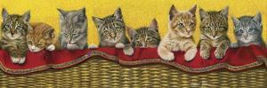 Eight Kittens in Basket by Janet Pidoux