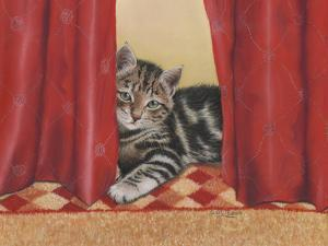 Favourite Hiding Place by Janet Pidoux