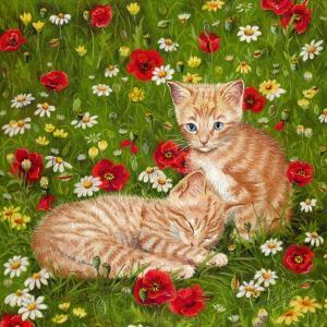 Ginger Kittens in Red Poppies by Janet Pidoux