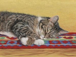 Sleepy Sam by Janet Pidoux