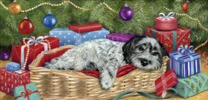 The Night before Christmas by Janet Pidoux