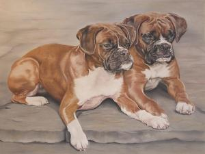 Two Boxer Dogs by Janet Pidoux