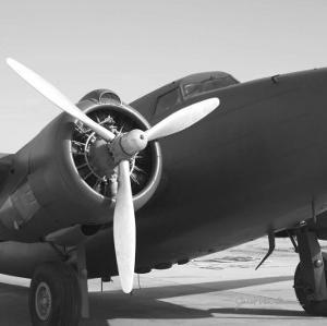 Vintage Flight IV by Janet Van Arsdale