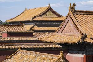 Rooftops, Forbidden City, Beijing, China, Asia by Janette Hill