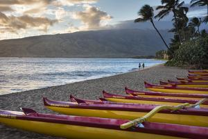 Hawaii, Maui, Kihei. Outrigger canoes on Kalae Pohaku beach and palm trees. by Janis Miglavs