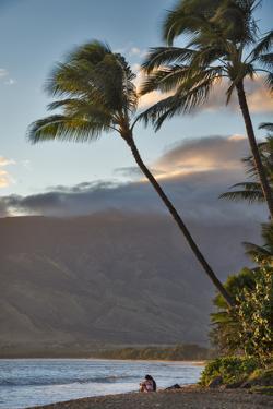 Hawaii, Maui, Kihei. Tourists walking under palm trees on Kalae Pohaku beach. by Janis Miglavs