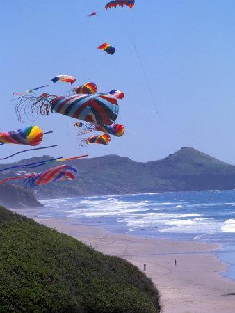 Kites Flying on the Oregon Coast, USA