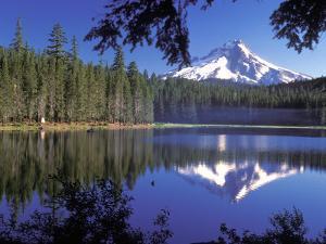 Mt. Hood Reflected in Frog Lake, Oregon, USA by Janis Miglavs