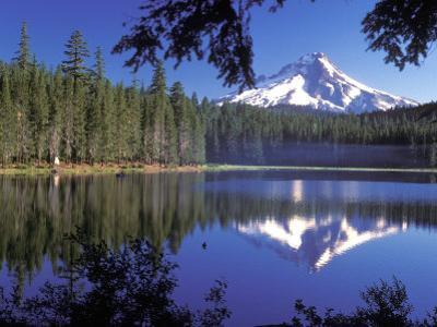 Mt. Hood Reflected in Frog Lake, Oregon, USA by Janis Miglavs