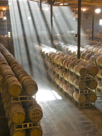 Shafts of Light in Barrel Room of Montevina Winery, Shenandoah Valley, California, USA