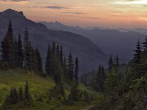 View of the North Cascade Mountains, Tatoosh Wilderness, Washington State, USA by Janis Miglavs