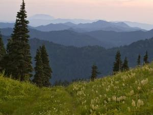 View of Washington Cascade Mountain Ranges, Washington State, USA by Janis Miglavs