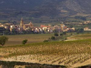 Village of Brinas surrounded by Vineyards, La Rioja Region, Spain by Janis Miglavs