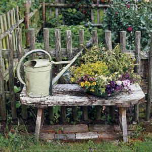 Garden of Yesteryear by Janne Peters