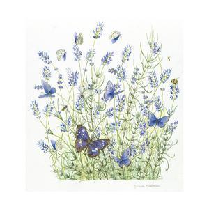 Lavender by Janneke Brinkman-Salentijn