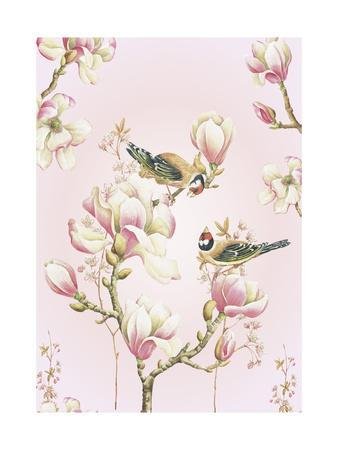 Magnolia Birds