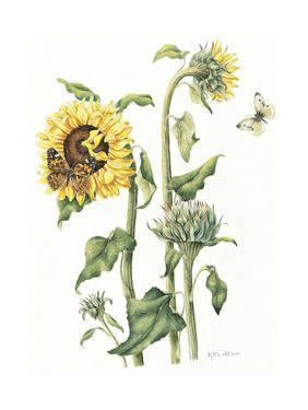 October Sunflower by Janneke Brinkman-Salentijn