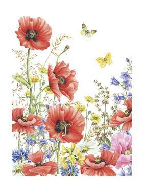 Poppies by Janneke Brinkman-Salentijn