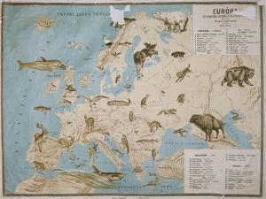 Map of Animals in Europe by Janos Balint