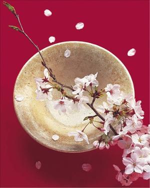 Japack Blooming Bowl