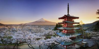 https://imgc.allpostersimages.com/img/posters/japan-yamanashi-prefecture-fuji-yoshida-chureito-pagoda-mt-fuji-and-cherry-blossoms_u-L-Q12SUM20.jpg?artPerspective=n