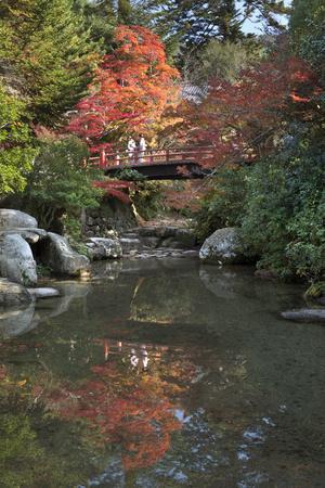 https://imgc.allpostersimages.com/img/posters/japanese-bridge-in-momijidani-park-japanese-maple-park-in-autumn_u-L-PWFKGF0.jpg?p=0