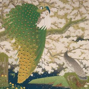 Peacocks and Cherry Tree, c.1925 by Japanese School