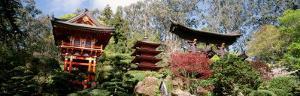 Japanese Tea Garden, Golden Gate Park, San Francisco California, USA