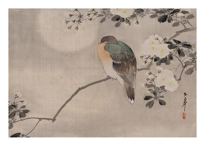 https://imgc.allpostersimages.com/img/posters/japanese-watercolor-of-bird-perched-on-a-branch-of-a-blossoming-tree_u-L-PF2QQ00.jpg?p=0