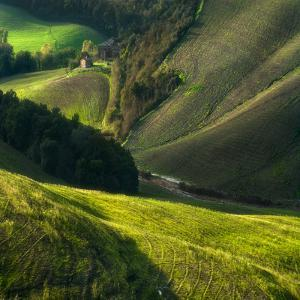 Crete Senses/Tuscany by Jarek Pawlak