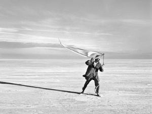 Longing For Wind 6, 2015 by Jaschi Klein