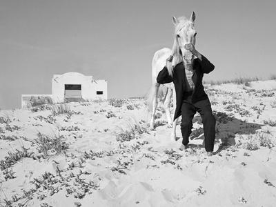 Pferd-Traum 3, 2015