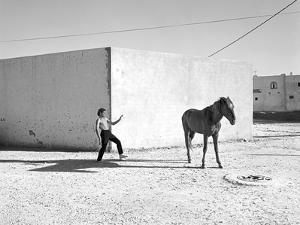 Pferd-Traum 6, 2015 by Jaschi Klein