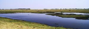 A Dwindling Waterhole on a Vast Flood Plain in the Dry Season by Jason Edwards