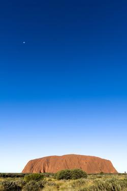 An Enormous Clear Blue Sky Rises Above the Desert Plain and Uluru by Jason Edwards