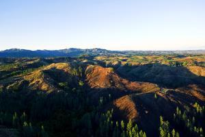Dawn Crowns Deforested Hilltops Surrounded by Pine Plantations by Jason Edwards