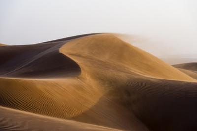 Sunset Caressing the Crests of Red Sand Dune Waves and Howling Wind in the Desert