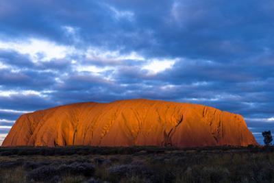 The Last Sunrays of Sunset Illuminate the Sandstone Massive of Uluru on the Desert Plain by Jason Edwards