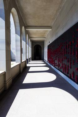 The Roll of Honour and the Names of Fallen Soldiers are Remembered with Bright Red Poppies by Jason Edwards
