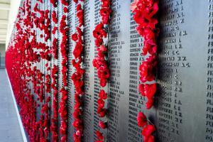 The Roll of Honour Where Fallen Soldiers are Remembered with Bright Red Poppies by Jason Edwards
