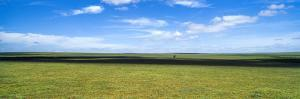 White, Fluffy Clouds Casting Shadows as They Float over the Endless Short Grass Savannah Plain by Jason Edwards