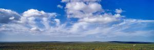 White, Fluffy Clouds Float over a Lone Thomson's Gazelle on the Endless Short Grass Savannah Plain by Jason Edwards