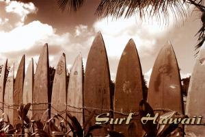 Surf Hawaii by Jason Ellis
